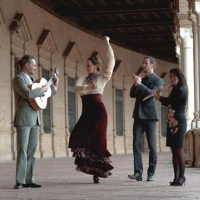 Music in the Park: Fin de Fiesta Flamenco